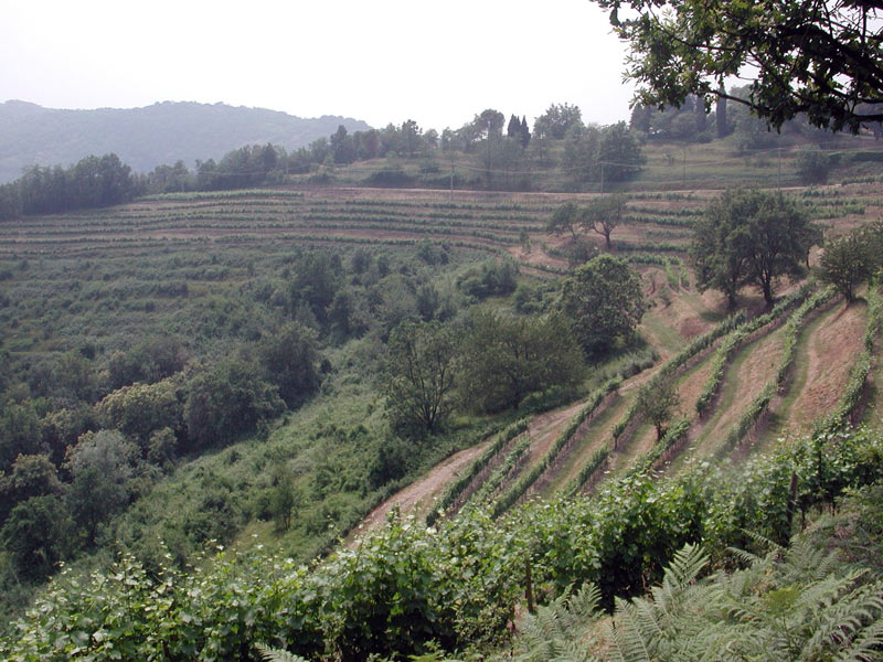 Parco di Montevecchia : Progetti : Valorizzazione del paesaggio ...